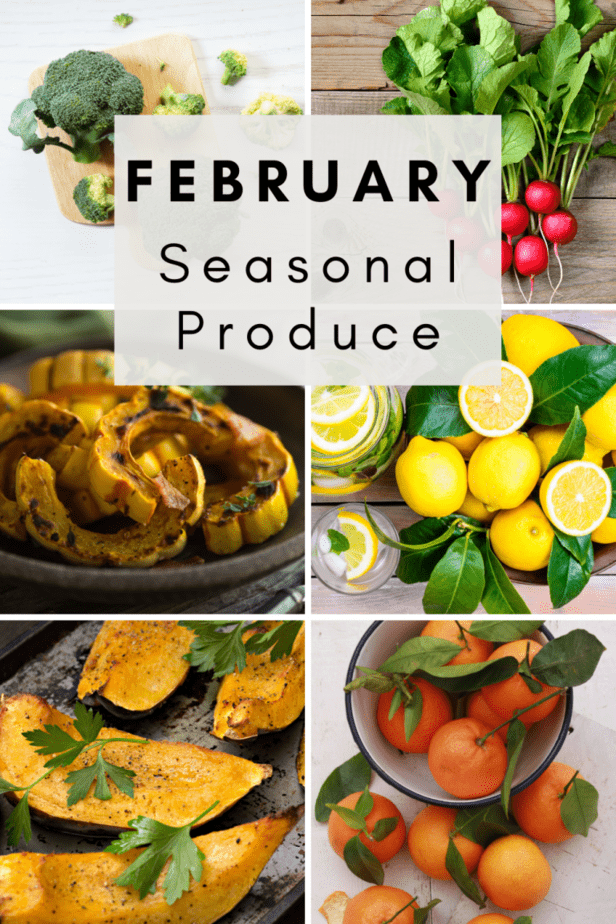 Fruits in season by month | February fruit | What's in season in February | Cheapest fruits and vegetables month by month | February fresh produce guide | Recipes to try in February | February foods in season | What fruits and vegetables are in season in February? | What fruits are in February? | What fruit is in season in February and march? | What seasonal produce is currently available?